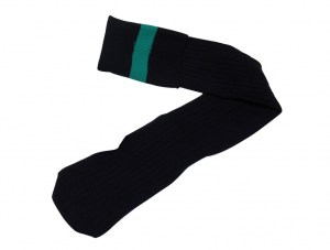 navy-with-green-stripe-socks